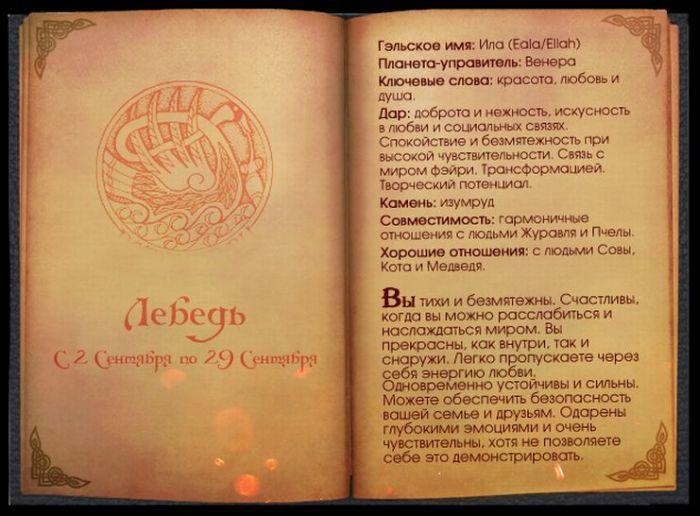 10 Гороскоп Кельтов Лебедь