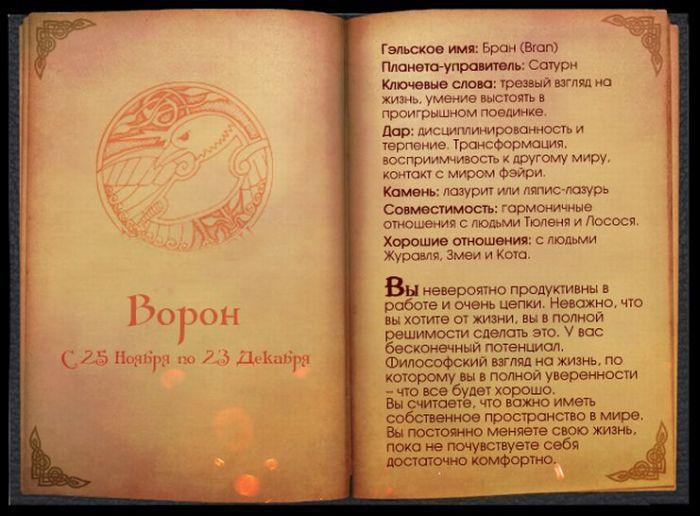 13 Гороскоп Кельтов Ворон