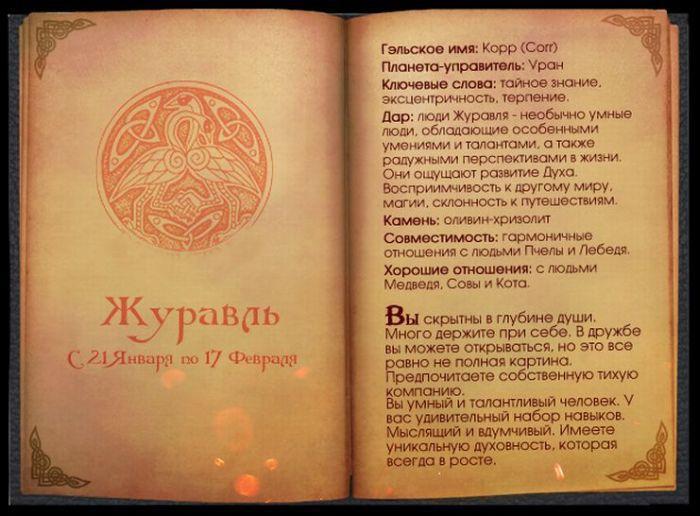 2 Гороскоп Кельтов Журавль