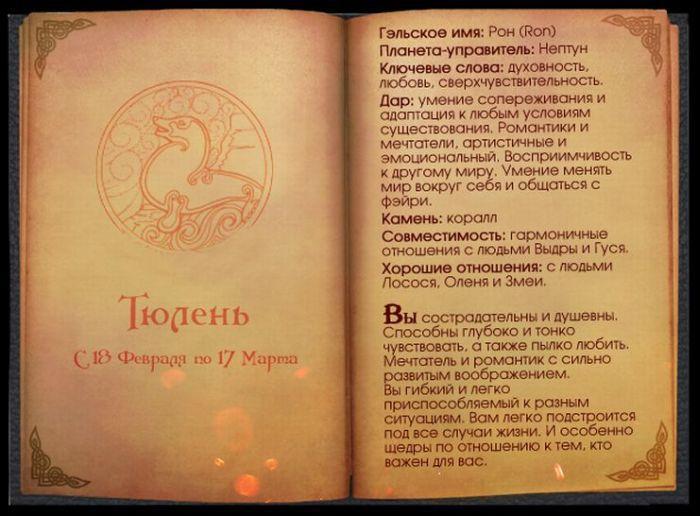 3 Гороскоп Кельтов Тюлень